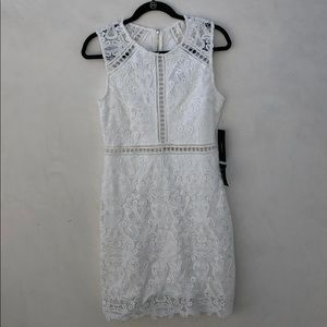 Dream Life White Lace Bodycon Dress - Lulu's